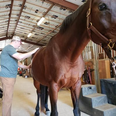 dr-thacker-with-horse-1